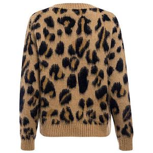 leopard-print-jumper-women-vintage-fashion-style-autumn-winter-free shiiping-cheap-leopard-jumper-forstep